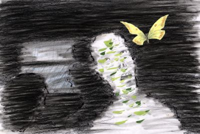 Pillango1.jpg